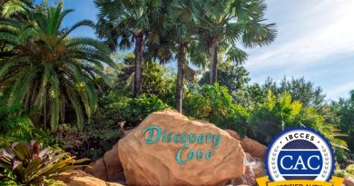 Discovery Cove Becomes First Autism-Certified Animal Interaction Park in US