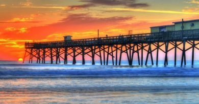 Florida travel: The big five in one dream trip