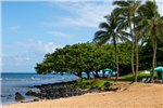 Holland America Line Invites Guests to Discover the Aloha Spirit