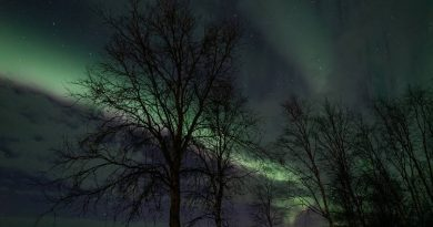 Covid 19 coronavirus: Northern Lights livestream delights travellers stuck at home