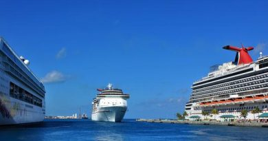 What Cruise-Selling Travel Advisors Can Do Right Now